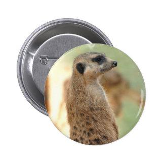 Meerkat Guard Button