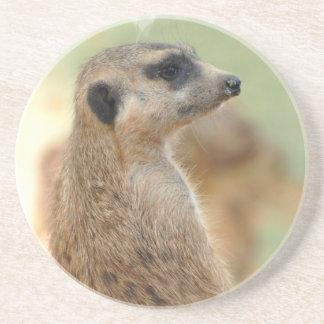 Meerkat Guard Coaster