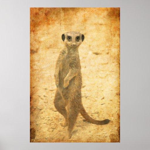 Meerkat guard poster