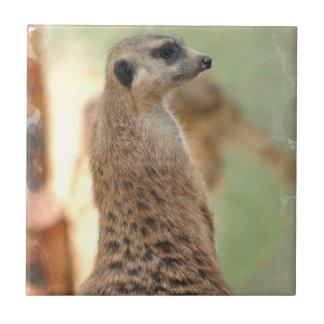 Meerkat Guard Tile