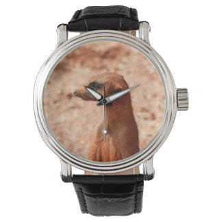 meerkat head close up zoo animal image wrist watch