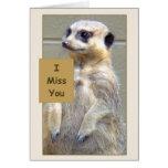 Meerkat I Miss You Greeting Card