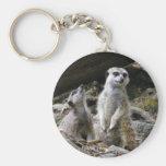 Meerkat Key Chains