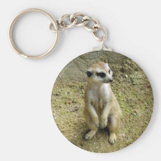 Meerkat Keychains
