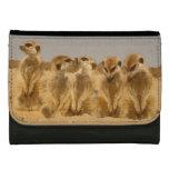 Meerkat leather wallet