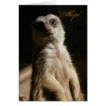"Meerkat lindo ""ESPERANZA"" cualquier tarjeta de fel"