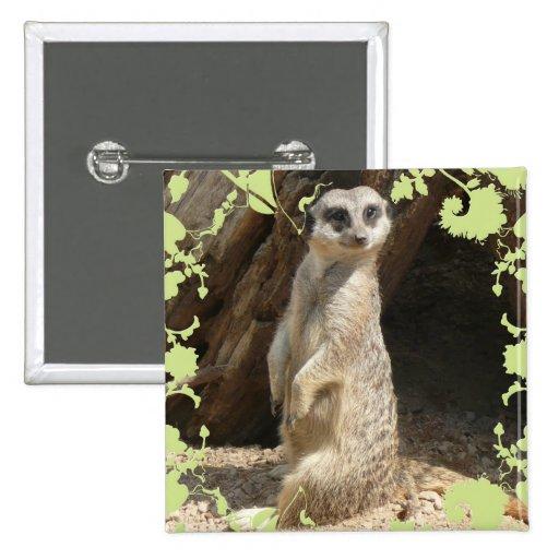 Meerkat lindo pins