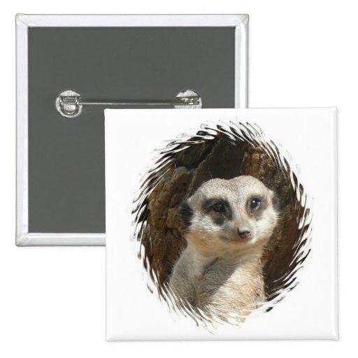 Meerkat lindo pin