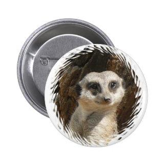 Meerkat lindo pin redondo 5 cm