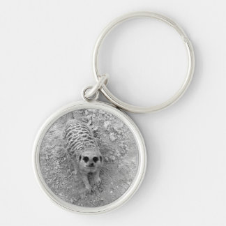 Meerkat looking up from ground photograph pic Silver-Colored round keychain