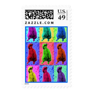 Meerkat Looking Up Pop Art Popart Multi-Panel Postage Stamps