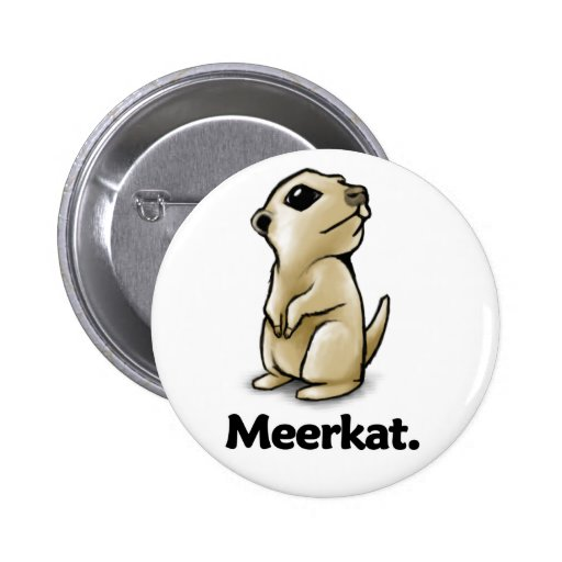 Meerkat Meerkat. Pin
