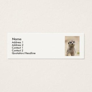 Meerkat Mini Business Card