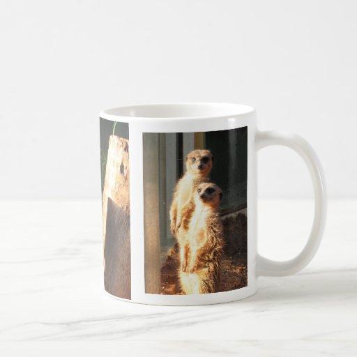 Meerkat Morning Classic White Coffee Mug