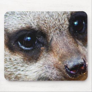 Meerkat Mouse Mat