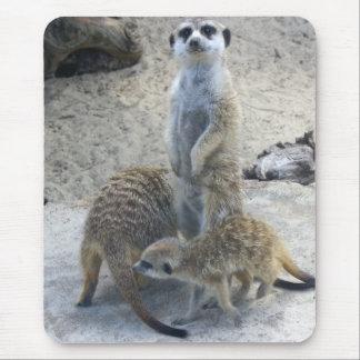 Meerkat Mouse Pad