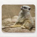 Meerkat Mousepad Tapetes De Raton