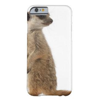 Meerkat o Suricate - suricatta del Suricata Funda Para iPhone 6 Barely There