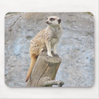 Meerkat on a Log Mouse Pad