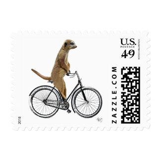 Meerkat on Bicycle Postage