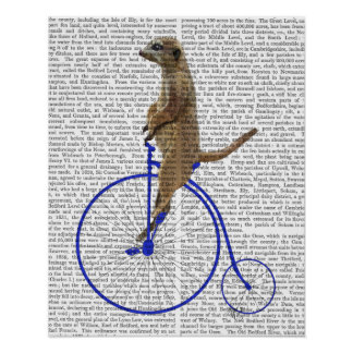 Meerkat On Blue Penny Farthing Poster