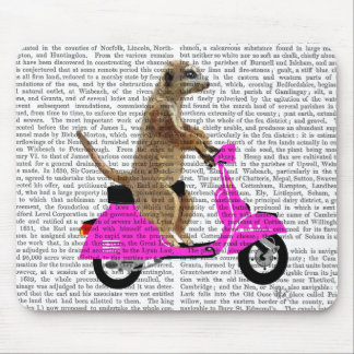 Meerkat on Pink Moped Mouse Pad