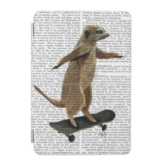 Meerkat On Skateboard 2 iPad Mini Cover