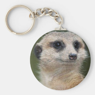 Meerkat on the look out basic round button keychain