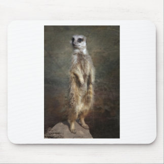 meerkat on the lookout mouse pad
