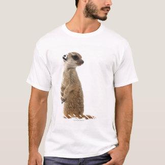 Meerkat or Suricate - Suricata suricatta T-Shirt