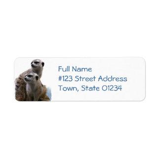Meerkat Pair Return Address Label