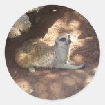 Meerkat pensativo pegatina redonda