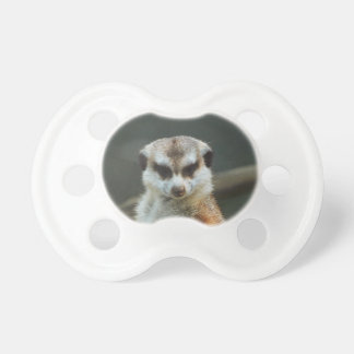 Meerkat Photo Pacifier