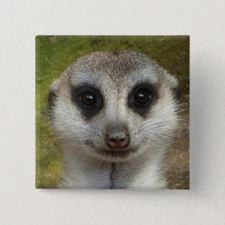 Meerkat Pinback Button