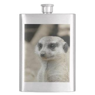 Meerkat Hip Flasks