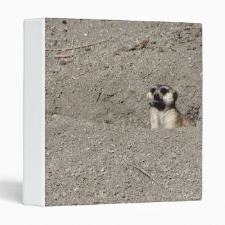 Meerkat popping out photograph binder