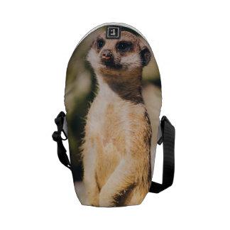 Meerkat Portrait Messenger Bags