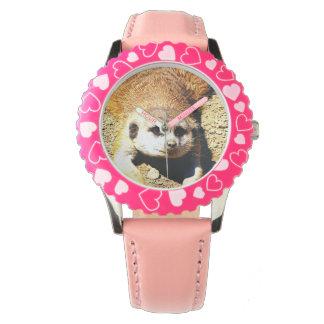 Meerkat precioso 415P Relojes