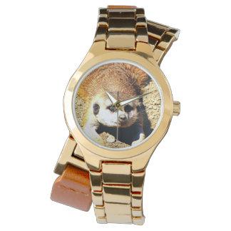 Meerkat precioso 415P Relojes De Mano