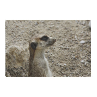 Meerkat precioso salvamanteles
