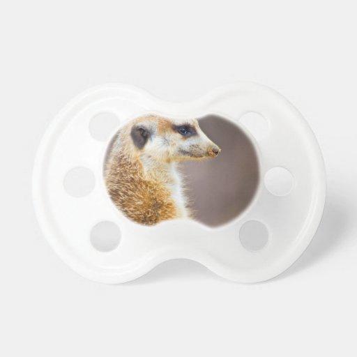 Meerkat profile pacifier