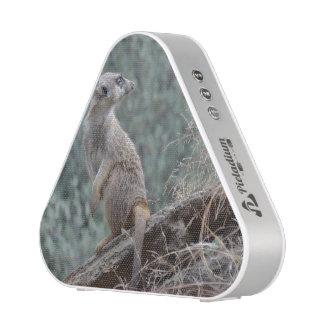Meerkat prudente altavoz bluetooth