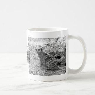 Meerkat que mira la imagen del photogarph del espe taza básica blanca