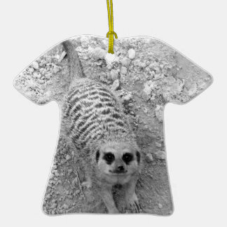 Meerkat que mira para arriba de imagen de la fotog adornos de navidad