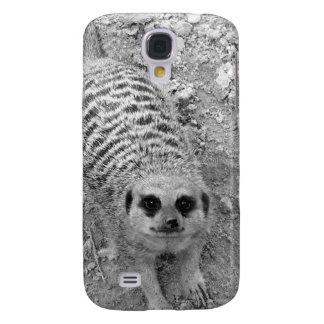 Meerkat que mira para arriba de imagen de la fotog samsung galaxy s4 cover