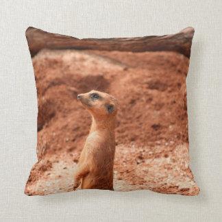 meerkat que se levanta el animal del gato del meer cojín decorativo