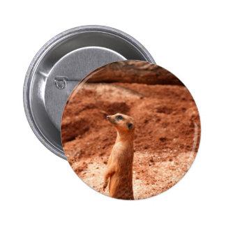 meerkat que se levanta el animal del gato del meer pin redondo 5 cm