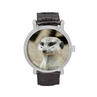 Meerkat Reloj