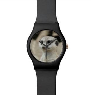 Meerkat Relojes