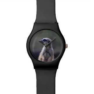 Meerkat Relojes De Pulsera
